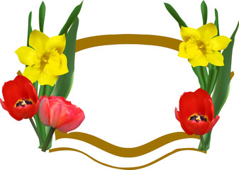 frame decorated by tulips and narcissus on white