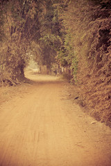 Vintage way walk in country Thailand