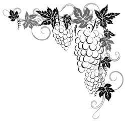 Wein, Weinreben, Weinblätter