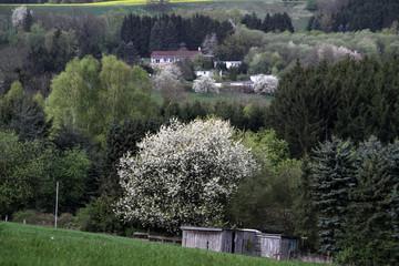 Ehemaliges Bungalowferiendorf in Alverdissen