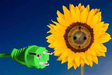 Green Energy - Sunflower with green Power Plug