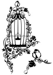 open bird cage among roses
