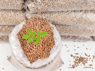 wood pellets in a Sack with tree sapling