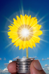 Sunflower in Lightbulb representing clean energy