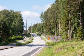 Country road in Finland