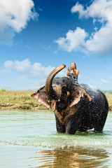 Elephant splashing water while taking bath in Chitwan Nepal