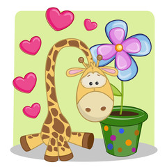 Giraffe with heart and flower