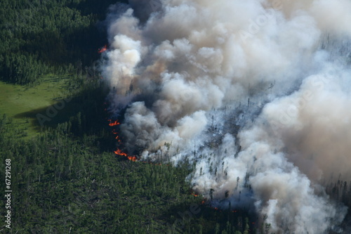 Fotobehang Luchtfoto Forest in fire, top view