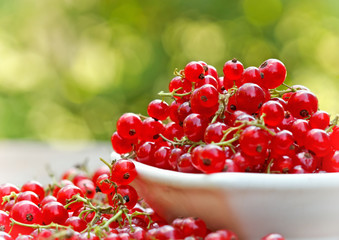 Organic red currant in bowl