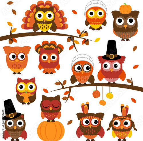 Fototapeta Thanksgiving and Autumn Themed Vector Owl Collection with Branch