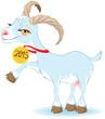 Blue Goat, Symbol 2015