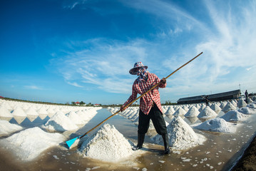 People piling up sea salt in farm