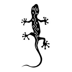 gecko in black silhouette with white line