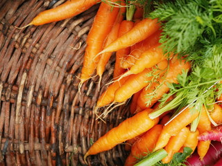Fresh carrots at the local market.