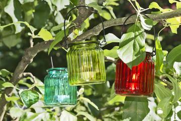 lantern in a tree