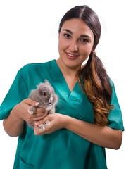 Mujer Veterinaria Conejo