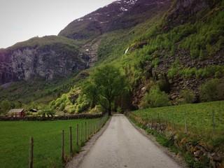 Weg in die Natur