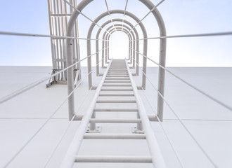 safety ladder for roof maintenance or fire emergency exit