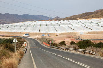 Greenhouse plantations in southern Spain