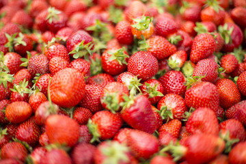 Fresh strawberries on the market