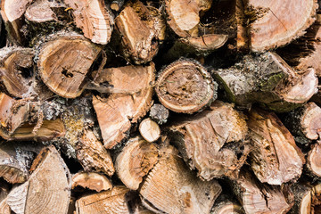 closeup of chopped fire wood stack