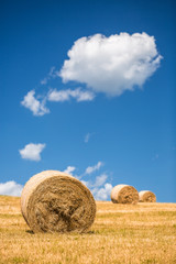 A field with straw bales after harvest.