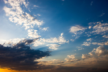 Cloudscape with the flying bird