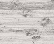 vector old wooden background