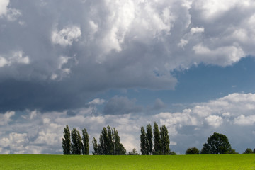 Dramatic sky over green field.