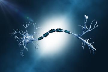 neuron digital illustration