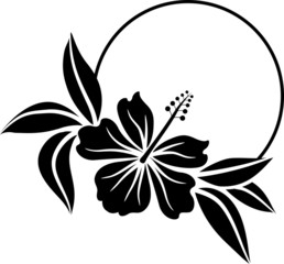 Hawaian frame