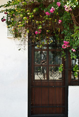 Entrance door and a rose bush