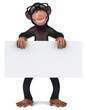 canvas print picture - Monkey