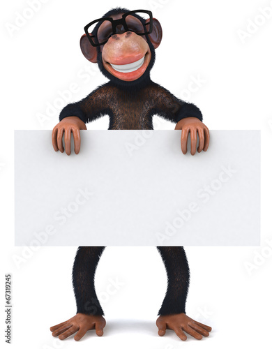 canvas print picture Monkey