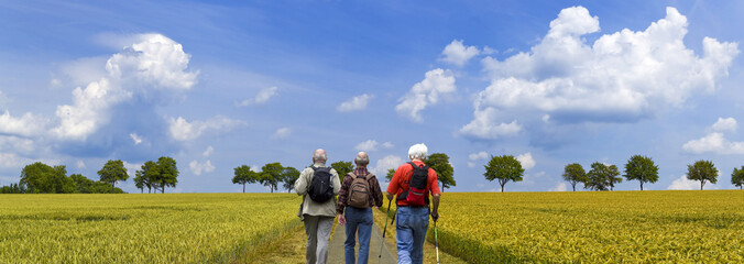 Wanderer auf den Weg durchs Kornfeld