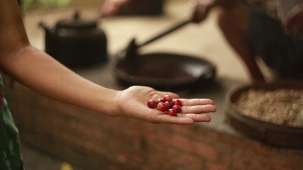 Raw coffee bean in woman hands
