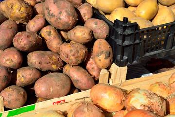 selling potatoes in vegetable shop