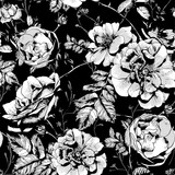 Fototapety Black and White Floral Seamless Background