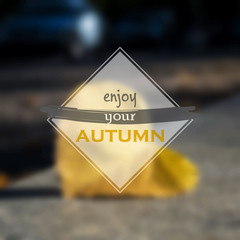 Enjoy your autumn