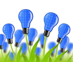 eco energy bulbs from solar panels on white background