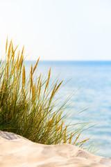 Bright Beach Scene © 75tiks
