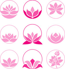 Pink lotus collection