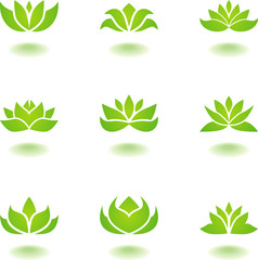 Green lotus icons