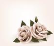 Obrazy na płótnie, fototapety, zdjęcia, fotoobrazy drukowane : Retro background with pink roses. Vector.
