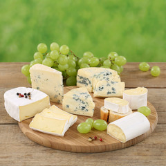Käseplatte mit Käse wie Camembert, Gorgonzola und Brie