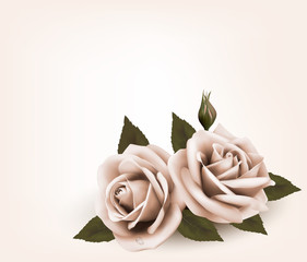 Retro background with pink roses. Vector.