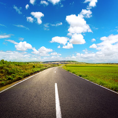 Asphalt road through agricultural fields over sky background