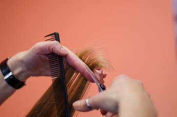 hairdresser shorten ends of the hair with scissors