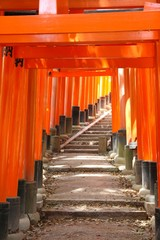 Kyoto, Japan - Fushimi Inari torii gates