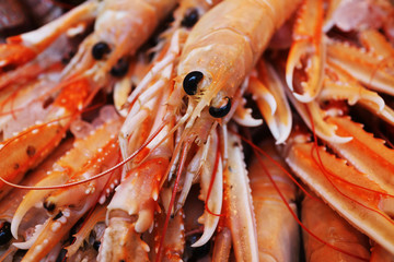 Jumbo shrimps displayed on fish market stall
